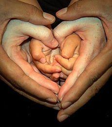 Что подарить родителям на 14 февраля?