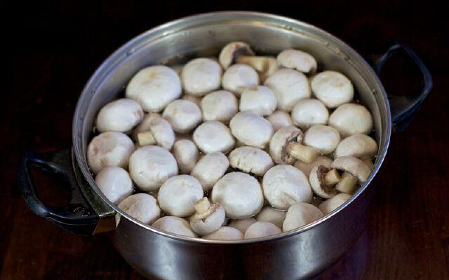 Маринованные грибы в домашних условиях: вкуснейшая закуска