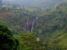 Поговорим об отдыхе в райском месте. Шри-Ланка