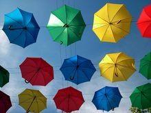 Выбираем стильный и качественный зонт